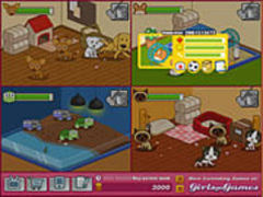 Animal Shelter Spiel